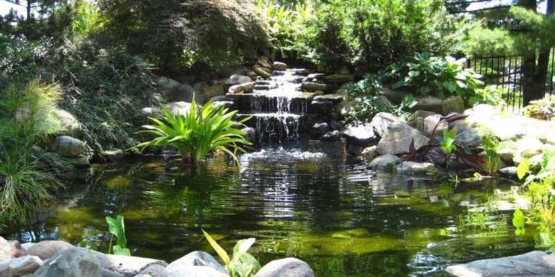 Czy warto robi oczko wodne w ogrodzie for Petit jardin sympa