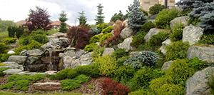 Aranżacja ogrodu w 7 krokach
