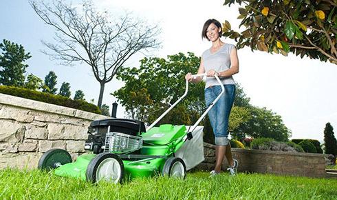 Od konewki po kosiarkę – pielęgnacja trawnika dla dbających o ogród