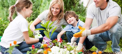 Urządzamy bezpieczny ogród dla całej rodziny