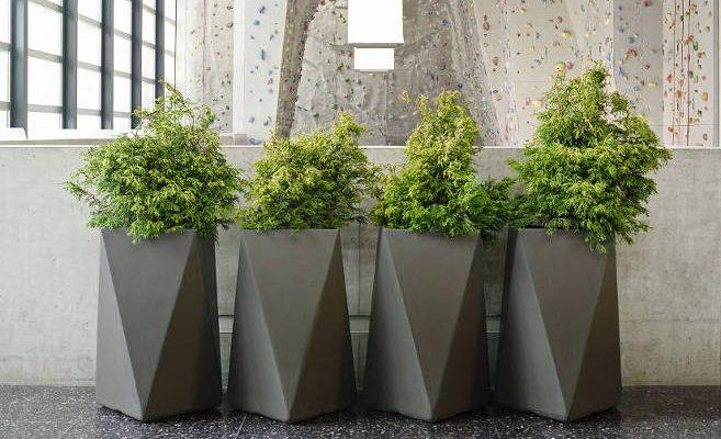 Nowoczesne donice – wyjątkowa aranżacja ogrodów