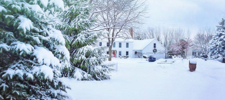 Ogród w zimie – jak o niego zadbać?
