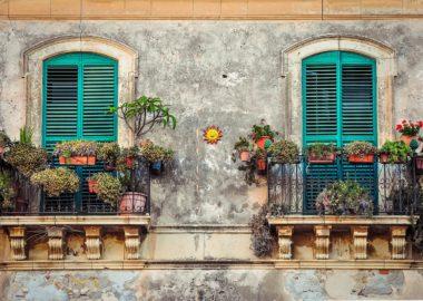 Rośliny na balkonie – to prostsze niż myślisz!