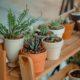 Donica ogrodowa – czym kierować się przy wyborze?
